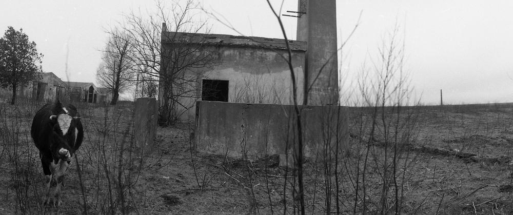 Sat Plopeni, Dobrogea