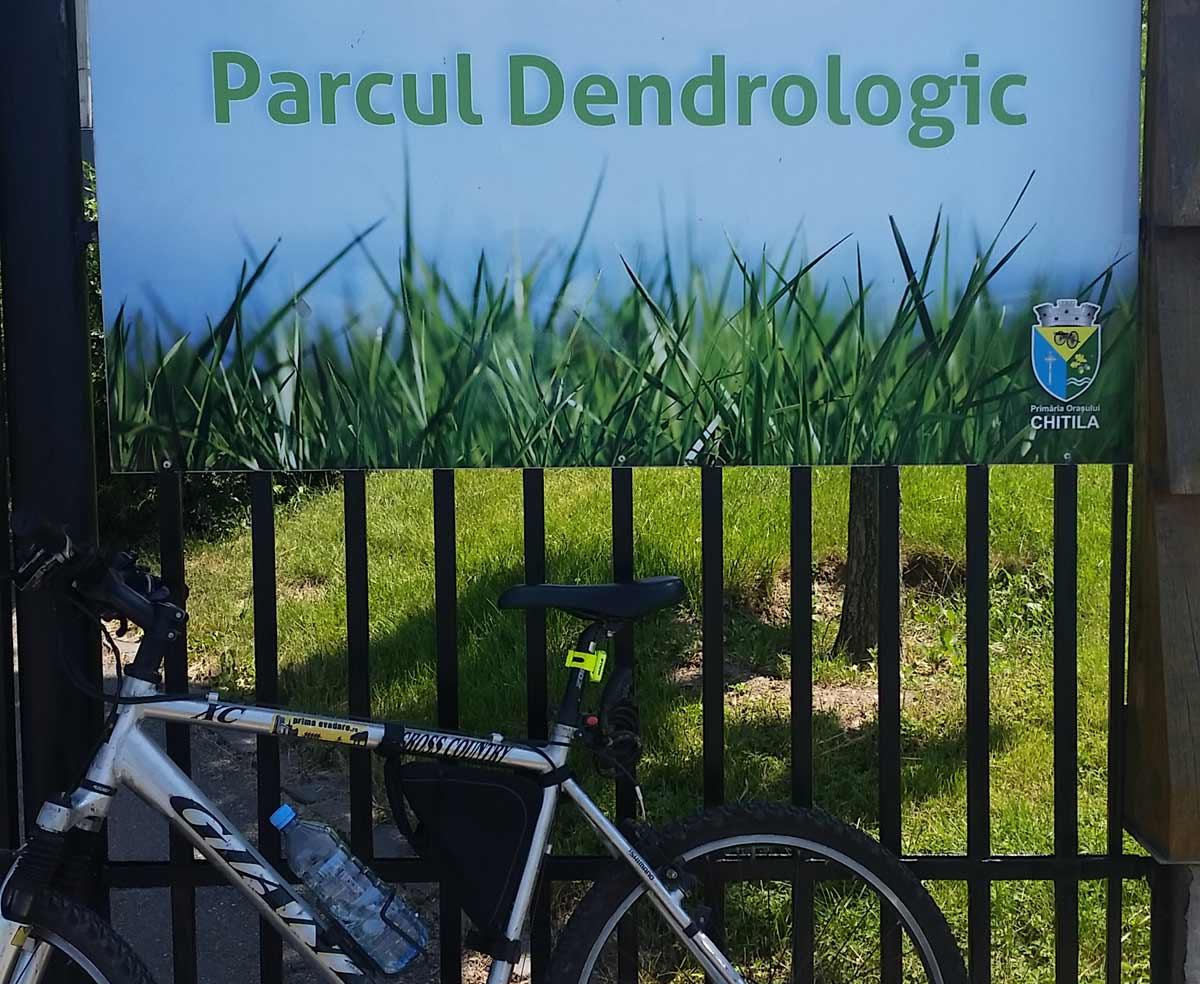 Parc-Dendrologic-Chitila