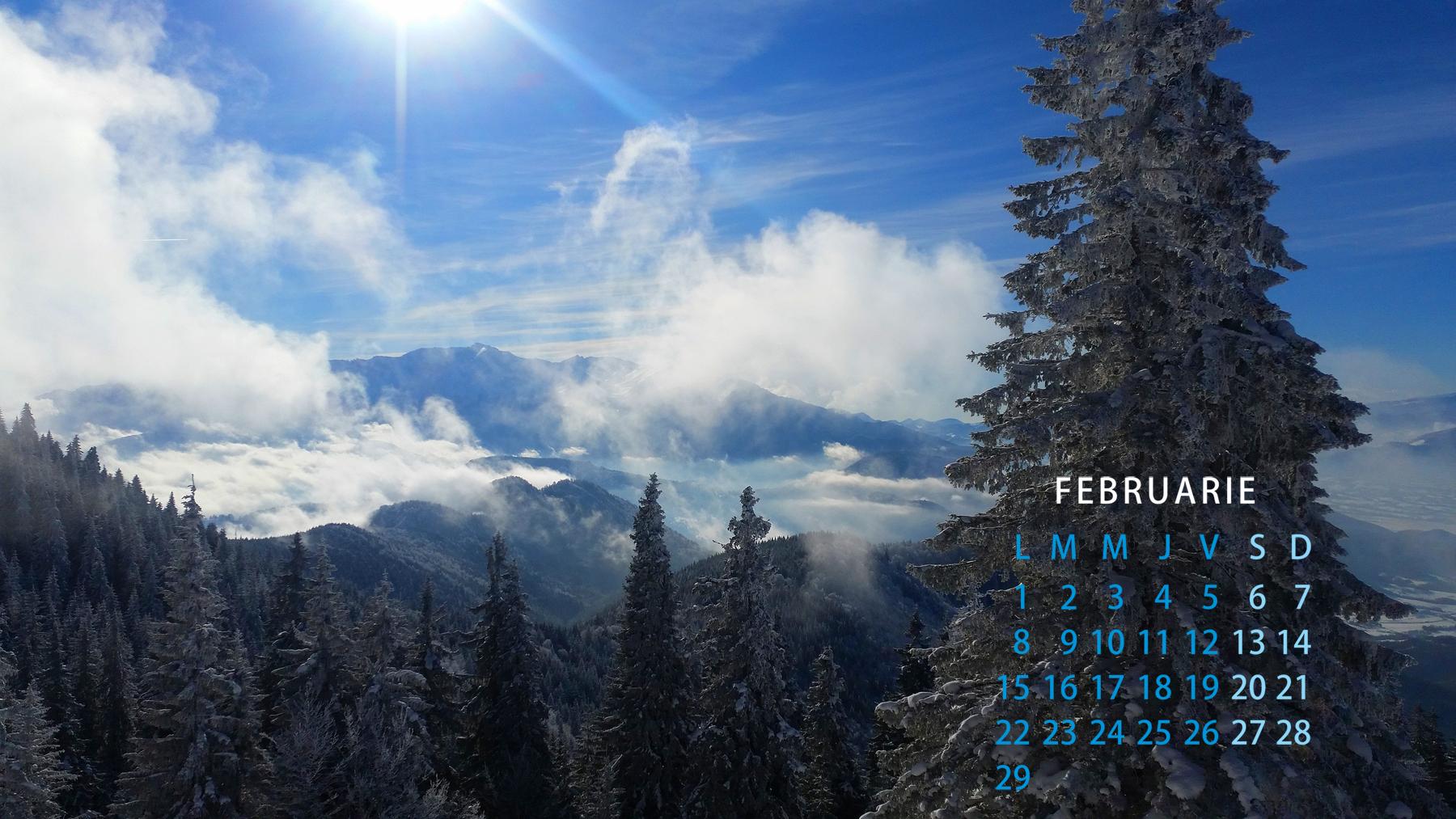 Free calendar februarie 2016