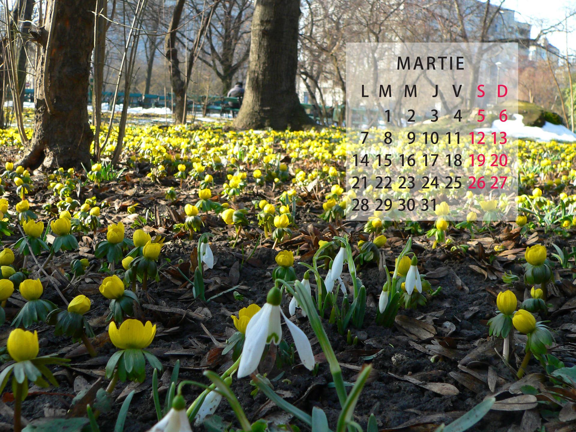 Free calendar march 2016