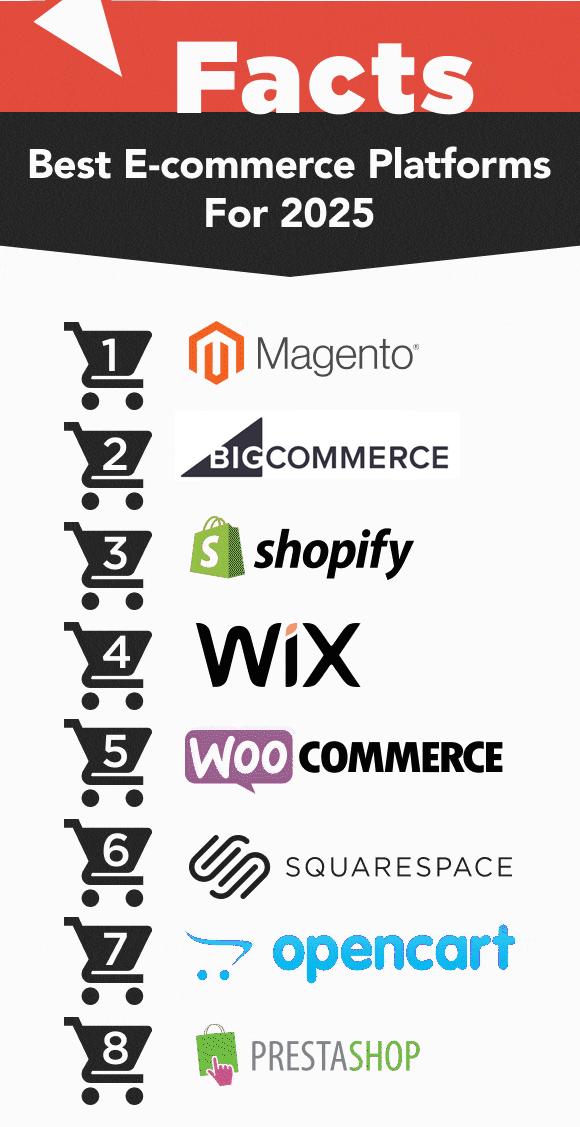 Infografic platforme comert online 2021
